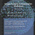 Image for Image Analysis Workshop